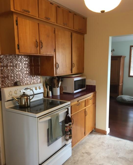10k Kitchen Remodel